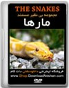 snakes1